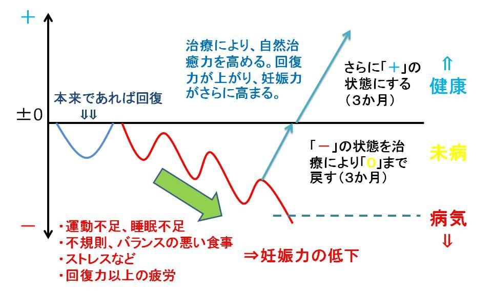 プレゼンテーション6