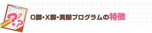 O脚・X脚・美脚プログラムの特徴